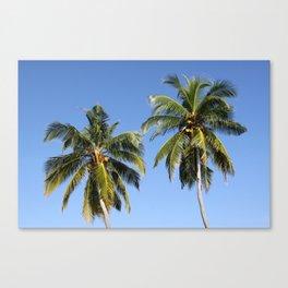 Maldivian Palms Canvas Print