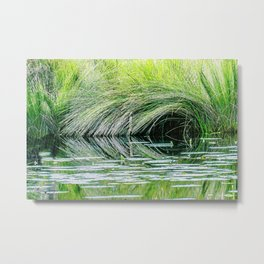 Wetlands (1) Metal Print
