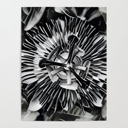 Passiflora Black and White Passion Flower Poster