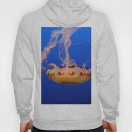 Medusa Jelly Hoody