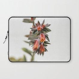 Summer Succulent #1 Laptop Sleeve