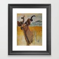 Greater Kudu (Tragelaphus strepsiceros)  Framed Art Print