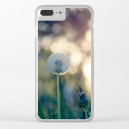 Dandelion blossom defocused seed head Clear iPhone Case