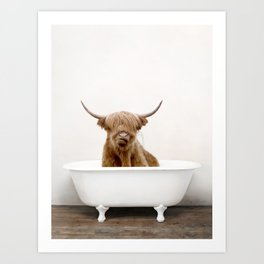 Highland Cow Bath (c) Art Print