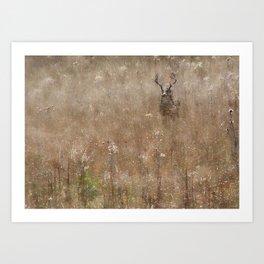 Autumn - Buck in Tennessee Art Print
