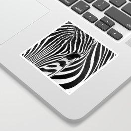 Portrait of Zebra Black and White #decor #society6 #buyart Sticker