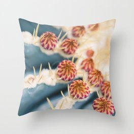 Barrel Cactus Blooms Throw Pillow
