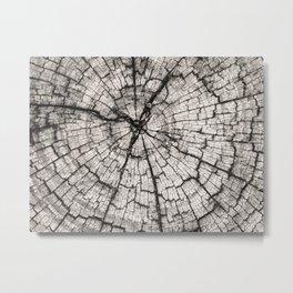circles in the wood grain Metal Print
