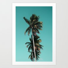 Palm tree vibes Art Print