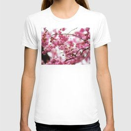 Japanese Cherry Blossoms 1 T-shirt