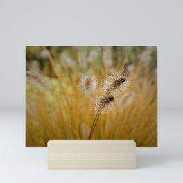 Dew on Ornamental Grass, No. 4 Mini Art Print