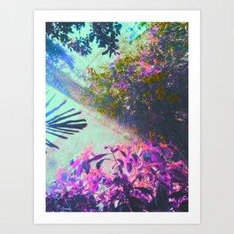 Indoors Garden Art Print