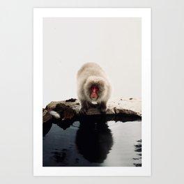 Snow Monkey Japan Art Print