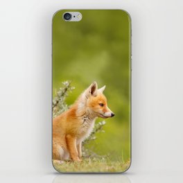 The Cute Fox Kit (Red Fox Cub) iPhone Skin