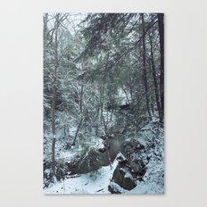 Hemlock Gorge Canvas Print