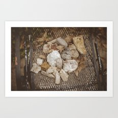 Amateur Geologist Art Print