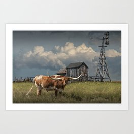 Longhorn Steer in a Prairie pasture by 1880 Town with Windmill and Old Gray Wooden Barn Art Print