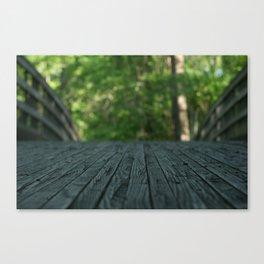 a walk in nature Canvas Print