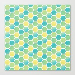 Summer Time Honeycomb Canvas Print