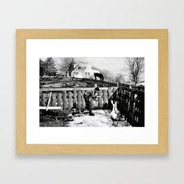 Hawkes Farm, 1970 Marblehead, MA Framed Art Print