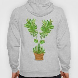 Potted Palm Hoody