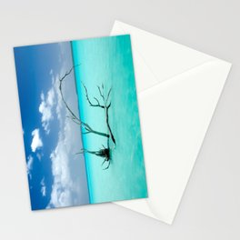 Driftwood in Lagoon Stationery Cards