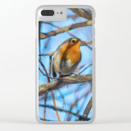 White Wagtail (Motacilla alba) on ice, frozen pond winter Clear iPhone Case