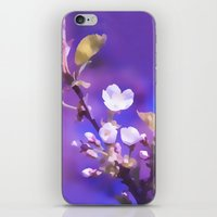 cherry blossoms iPhone & iPod Skins featuring CHERRY BLOSSOMS by VIAINA
