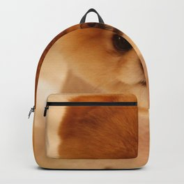 Adorable Pomeranian Puppy Backpack
