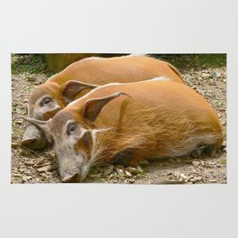 Red River Hogs taking a nap Rug