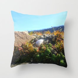 White Stone In The Sun Throw Pillow