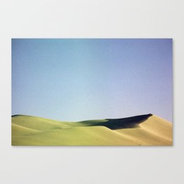 grain loss Canvas Print