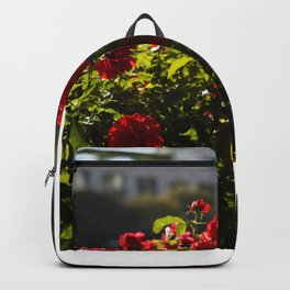 Getty Gardens Backpack