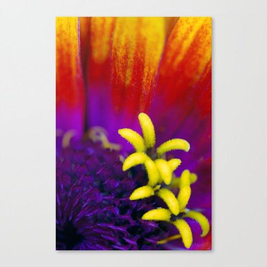 Tiny Garden Canvas Print