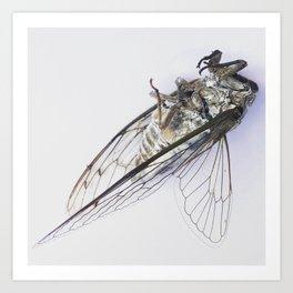 Cicada poses Art Print