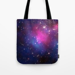 Dark Matter and Galaxies in a Cluster Tote Bag