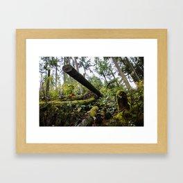 chopped down Framed Art Print