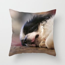 Cute Sleepy Chihuahua Throw Pillow
