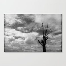 Nature in black and white ~ 3 Canvas Print