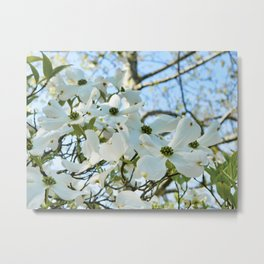 Dogwood 6 #easter Metal Print