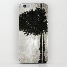 Pine on the Lake iPhone & iPod Skin