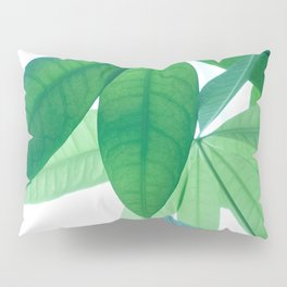 Pachira aquatica #1 #decor #art #society6 Pillow Sham