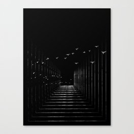 Optical Liberty Canvas Print