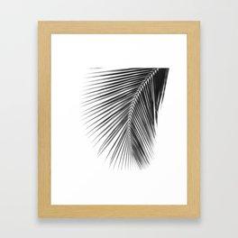 Palmii Framed Art Print