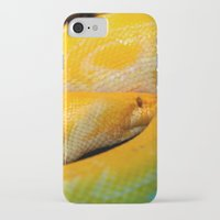 monty python iPhone & iPod Cases featuring Albino Python by GardenGnomePhotography