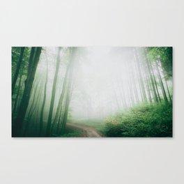 Let You Go Canvas Print