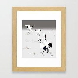 Red crowned Crane Framed Art Print