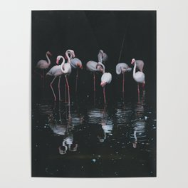 flamingos #society6 #decor #buyart Poster