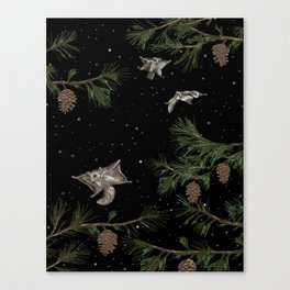 FLYING SQUIRRELS IN THE PINES Canvas Print