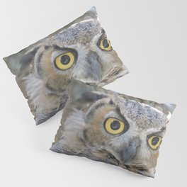 Young Owl at Noon Pillow Sham